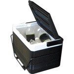 12-pack Cooler With Rear Fender Mounting Basket (Fits Select Models)