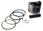 Club Car DS /  Precedent Gas Fe290 .25mm Piston & Ring Kit (Fits 1992-Up)